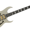 IBANEZ ( アイバニーズ ) / PGM333 Paul Gilbert's 30th Anniversary model